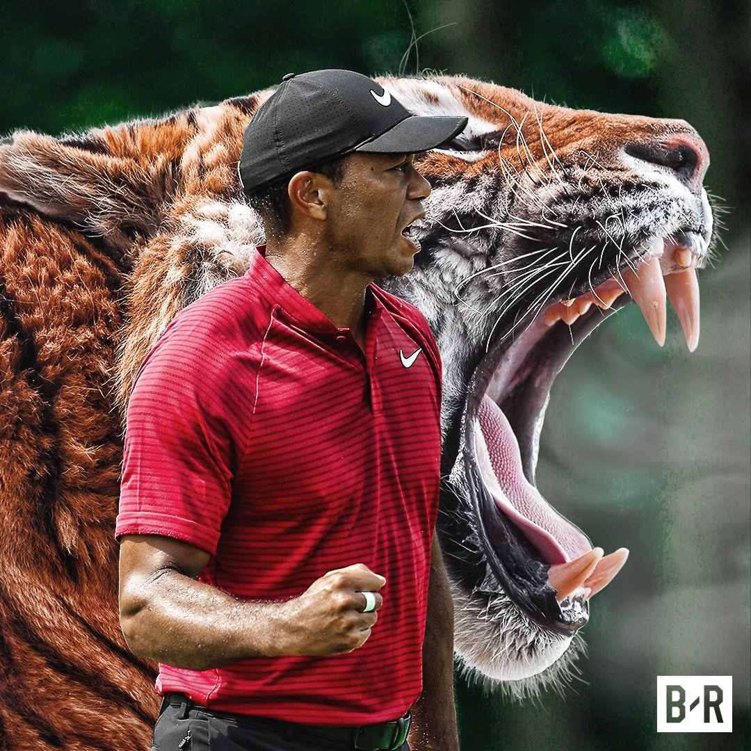 Tiger wins the 2019 Masters, the 15th major championship of his career! 🐅