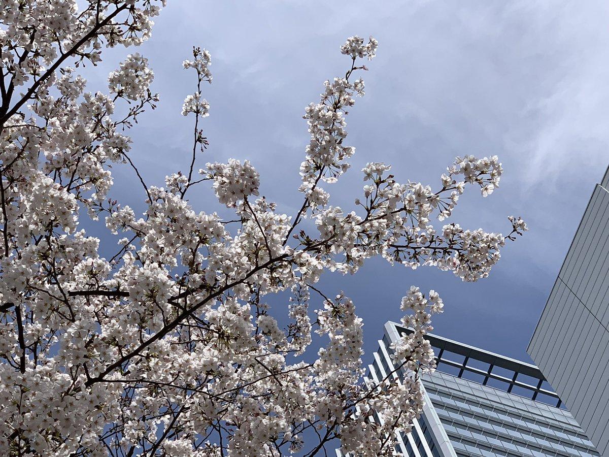 今日は大事な家族の誕生日‼️?歳取ってきたよねー?わたしは就職で上京してますが、けっこう実家に帰ってます✨ゆっくりはせず1-2泊ですが東京で一生懸命頑張りながらも、家族から受けた恩や愛情はぜったい忘れません??お誕生日おめでとう??また近いうち帰ります♪