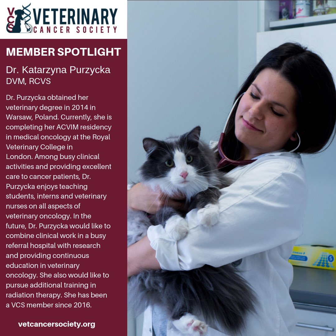 Veterinary Cancer Society on Twitter: