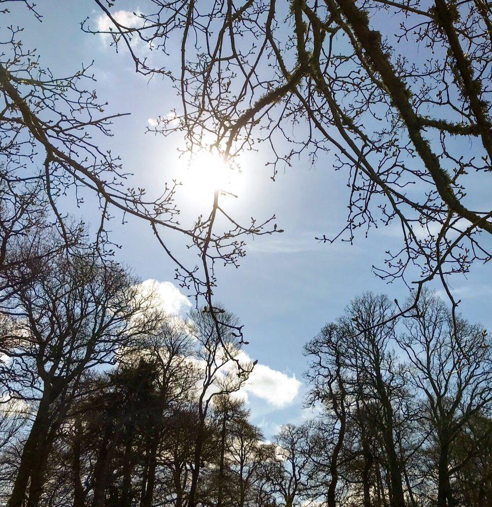 Cloudymamma's photo on #mondaymorning