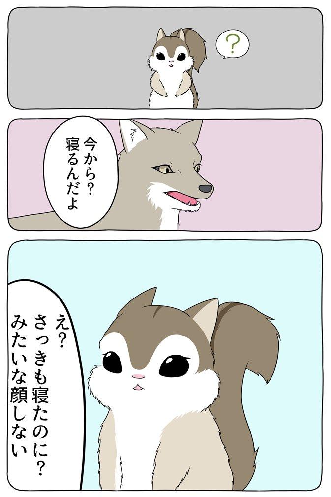 あの動物漫画がまだまだ続いているので