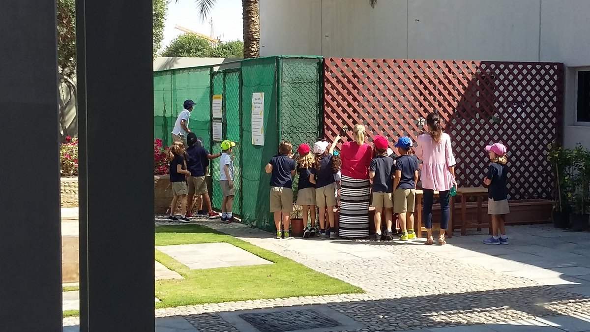 Sneaking a peek at our new Bee Garden neighbors! #ZayedSustainabilityPrize #bees  #edchatMENA #learning @asdubailearns #ecofriendly #pollinators #edchat #Dubai #teachSDGs