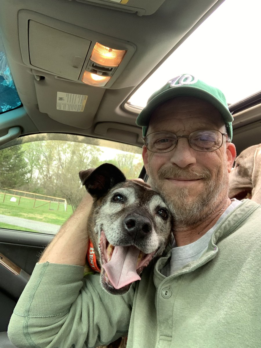 Got locked out of my account on Saturday so yesterday I went and rescued Diesel. He's 15 and his owners didn't want him anymore (assholes) #seniordogs #DogsofTwitter <br>http://pic.twitter.com/seBOFGOUtc
