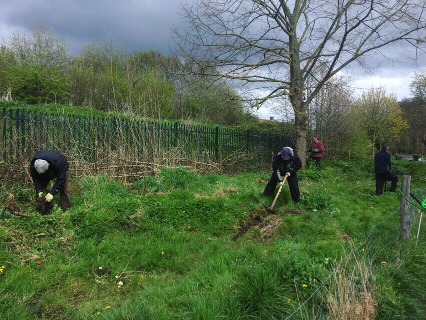 Remembering last week in Crane Park opening up some the paths running along Fulwell Park Road, finishing the binding of one of the hedges we layed in the winter, and doing some maintenance work in the wetland scrapes we planted up in 2017, which are coming along brilliantly!