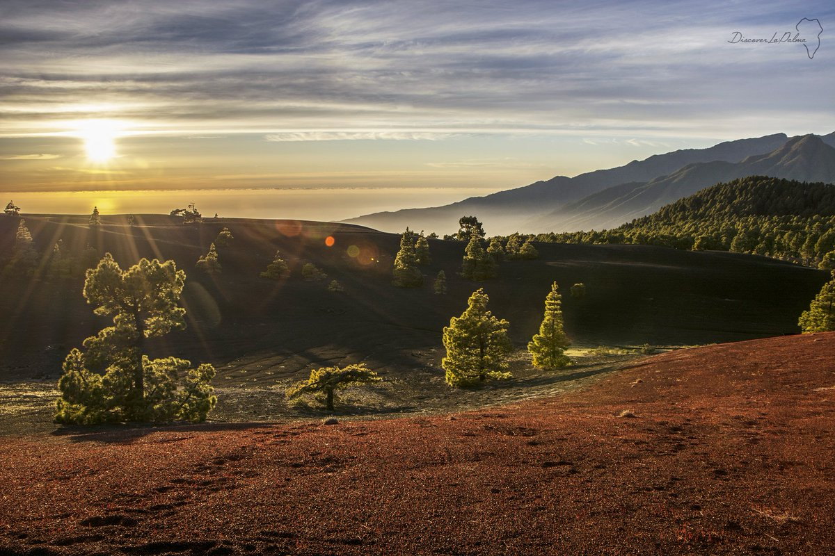 Discover La Palma's photo on #FelizLunes