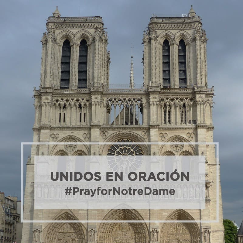 ACI Prensa's photo on #PrayForNotreDame