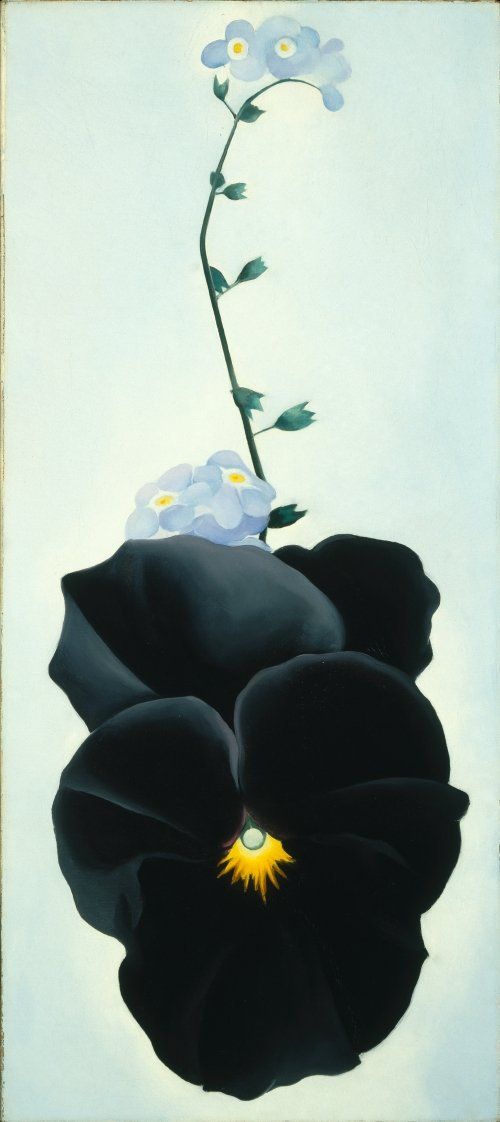 &quot;If you take a flower in your hand and really look at it, it&#39;s your world for a moment.&quot; Georgia O&#39;Keefe #WorldArtDay <br>http://pic.twitter.com/PHr4f2p62e