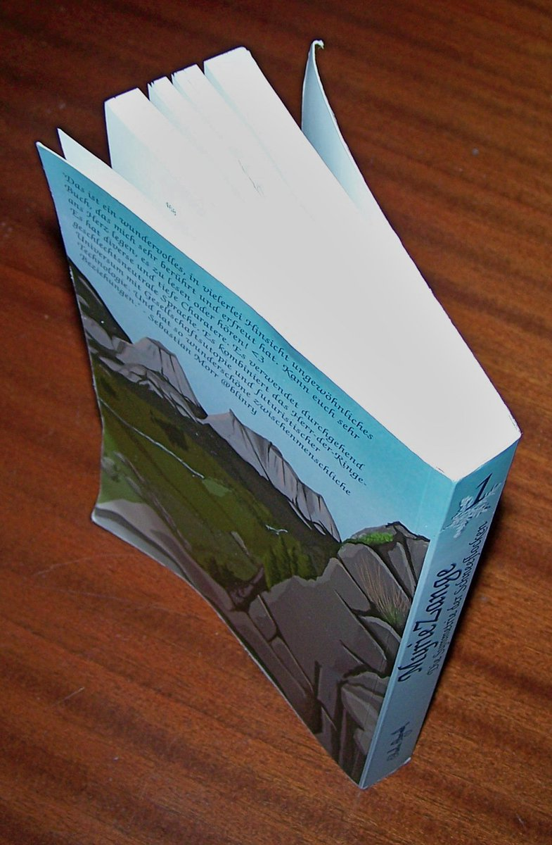 book the central atlantic magmatic province insights from fragments