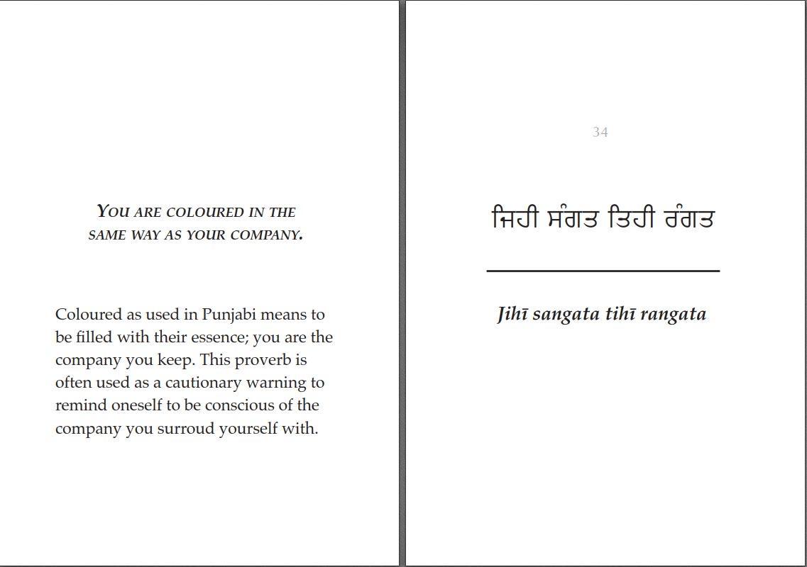 By Photo Congress || Meaning Of Baking Soda In Punjabi Language