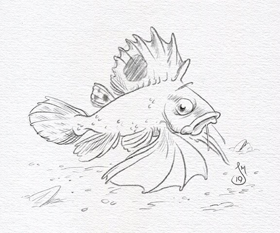 DO NOT step on an Ocellated Waspfish! It will hurt... and they just don&#39;t like it.  #KidLitArt  #DailyDoodle @AnimalAlphabets<br>http://pic.twitter.com/nmI8KyvhX7