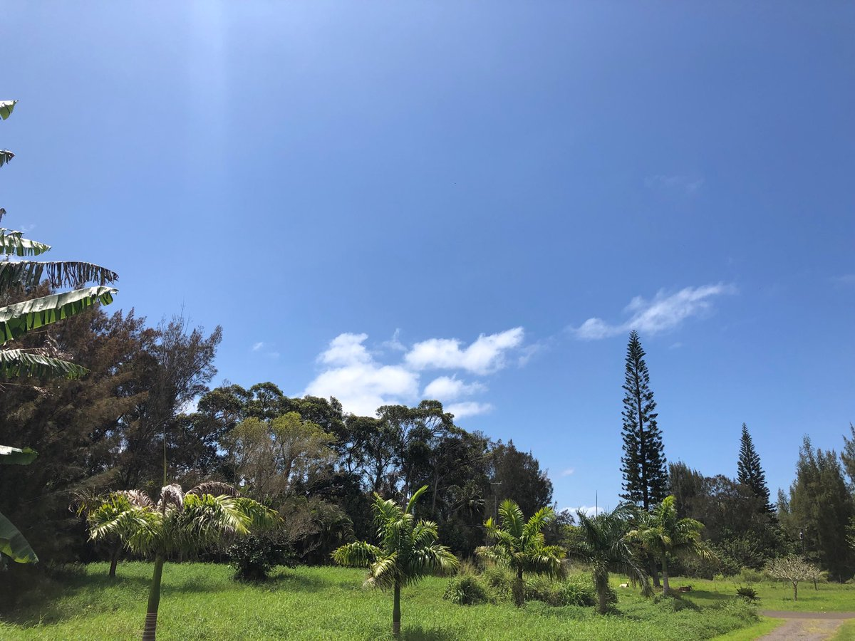 test Twitter Media - Warm with mostly clear skies on the north shore. #cmweather #Maui #blueskies #mauinokaoi https://t.co/25G49CtOfl