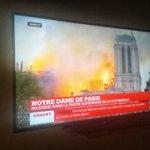 Image for the Tweet beginning: Płonie Katedra Notre-Dame. Miliony ludzi