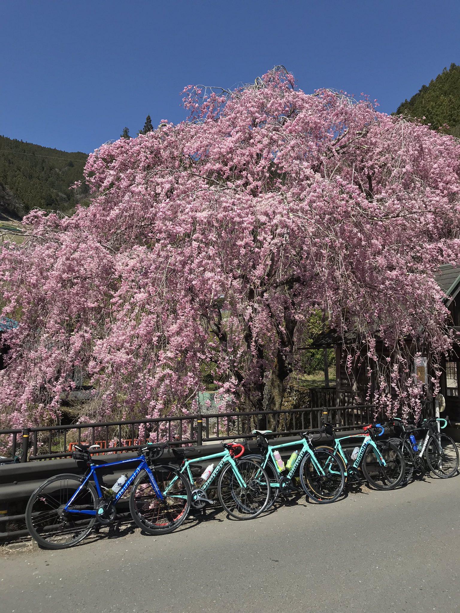 【立川】これからスポーツバイク始めたい方ヘ