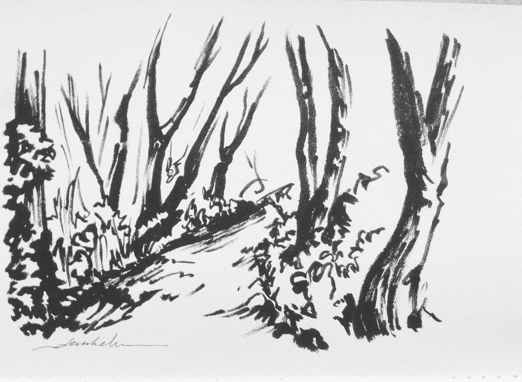 Art research in the woods https://t.co/Mz42fuN3HM https://t.co/jLcbcNo8VW