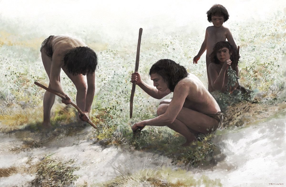 Magnífica ilustración d Tom Björklund: Neandertales en Poggetti Vecchi excavando con palos de madera. No os imagináis algo parecido en Aranbaltza? Eso sí con algo más de humedad!