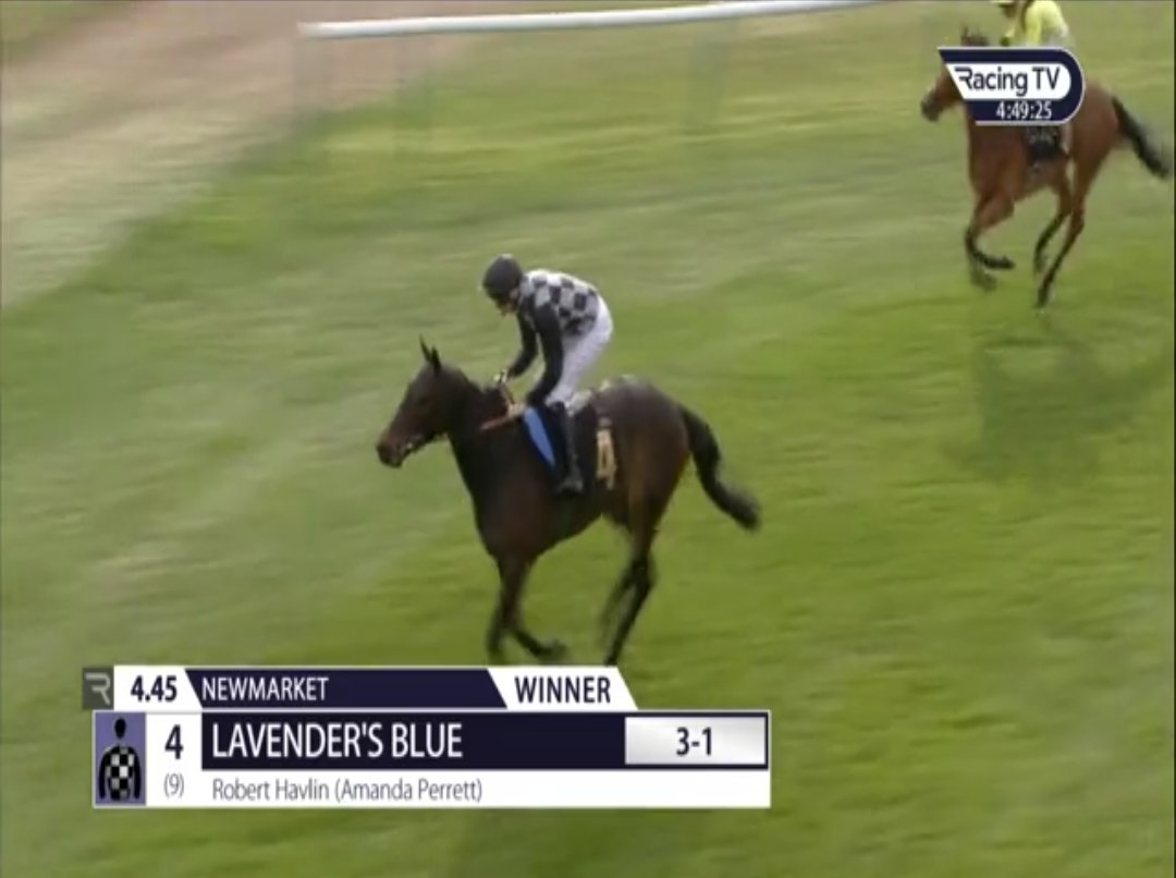 🏇 𝚃𝟺𝙿 Ⓜ️'s photo on #newmarket