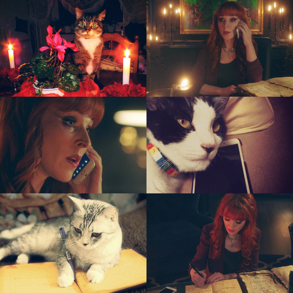Rowena MacLeod from the episode &quot;Absence&quot; and cats   @RuthieConnell, it&#39;s always such a joy to see you on my screen  Hope you have wonderful day!  #SPNFamily <br>http://pic.twitter.com/x89SyORvHm