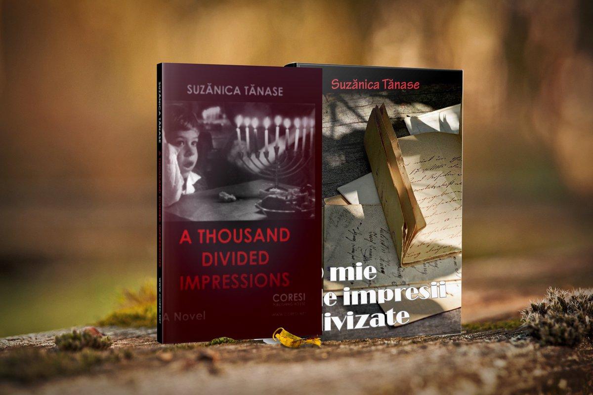 A Novel A Thousand Divided Impressions