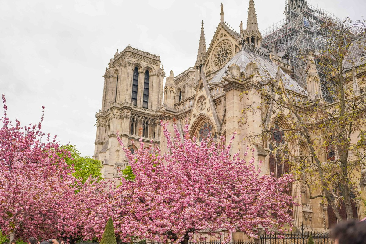 After the fire, we asked writers to reflect on what Notre Dame has meant to them. Some answers: Sacred symbol, tourist attraction, beacon for visitors and locals alike.  https://nyti.ms/2DiEXmH