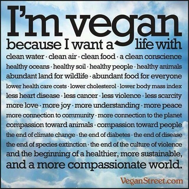 Who wouldnt #love this - #vegan because its the right thing to do!