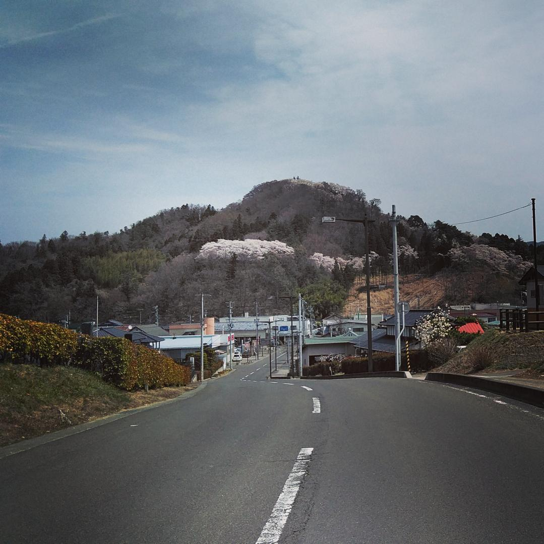 We climbed Mt Chausu this morning! #Fukushima #DateCity #Ryozen #霊山町 #茶臼山 🌸 Next is Tsukidate`s Hana Koubou...