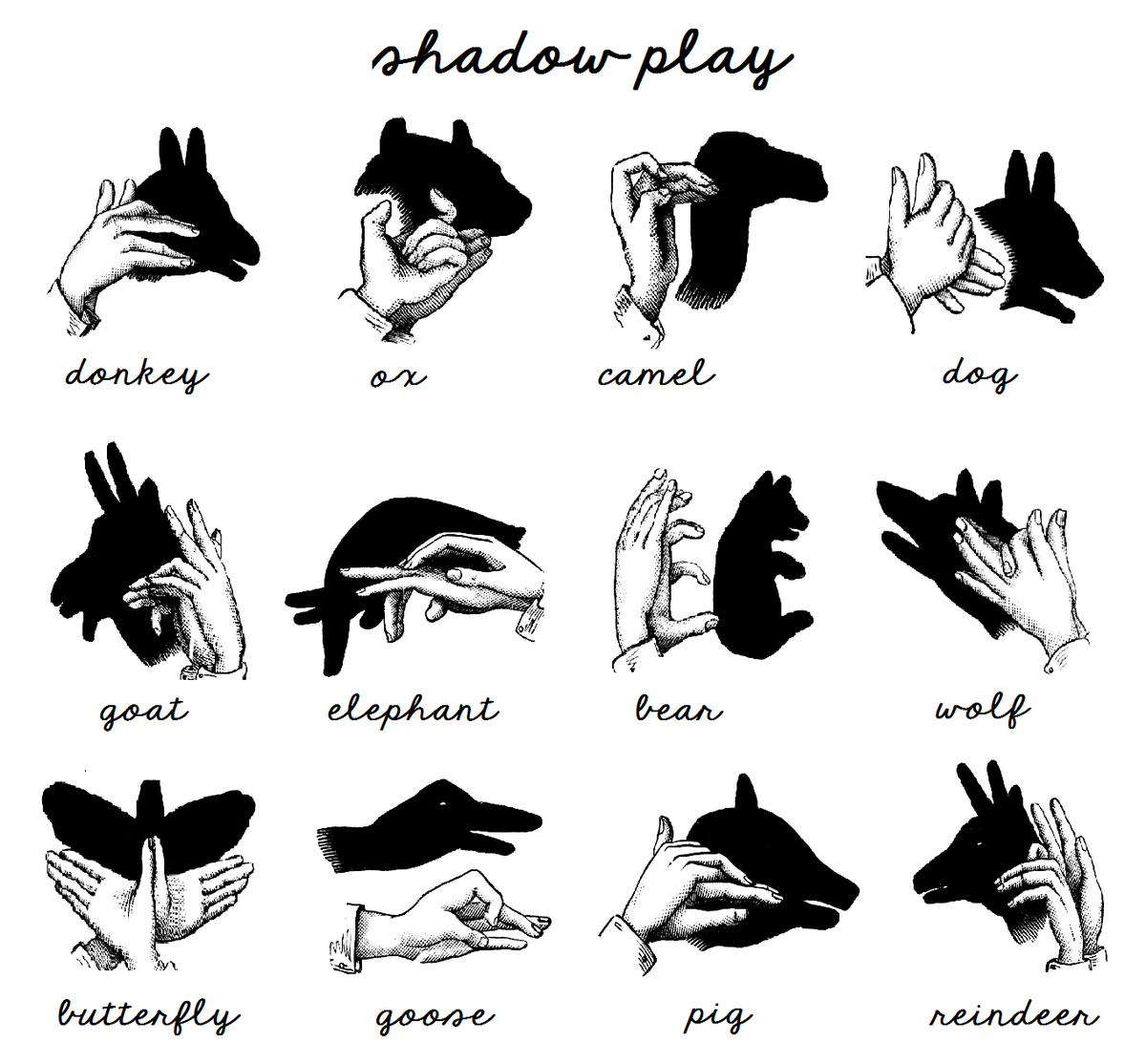 Useful shadow puppet how-to guide   http://bit.ly/2AqSlpT
