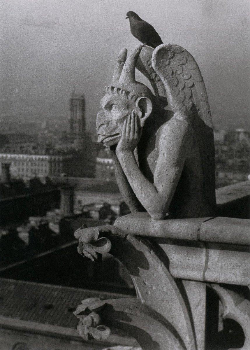 Diable et Pigeon Notre-Dame de Paris  📷Brassaï