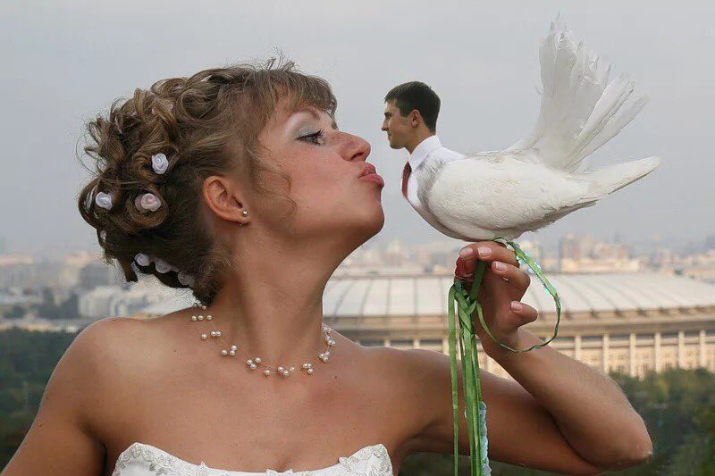 Картинки про свадьбу с приколами, картинки анимации