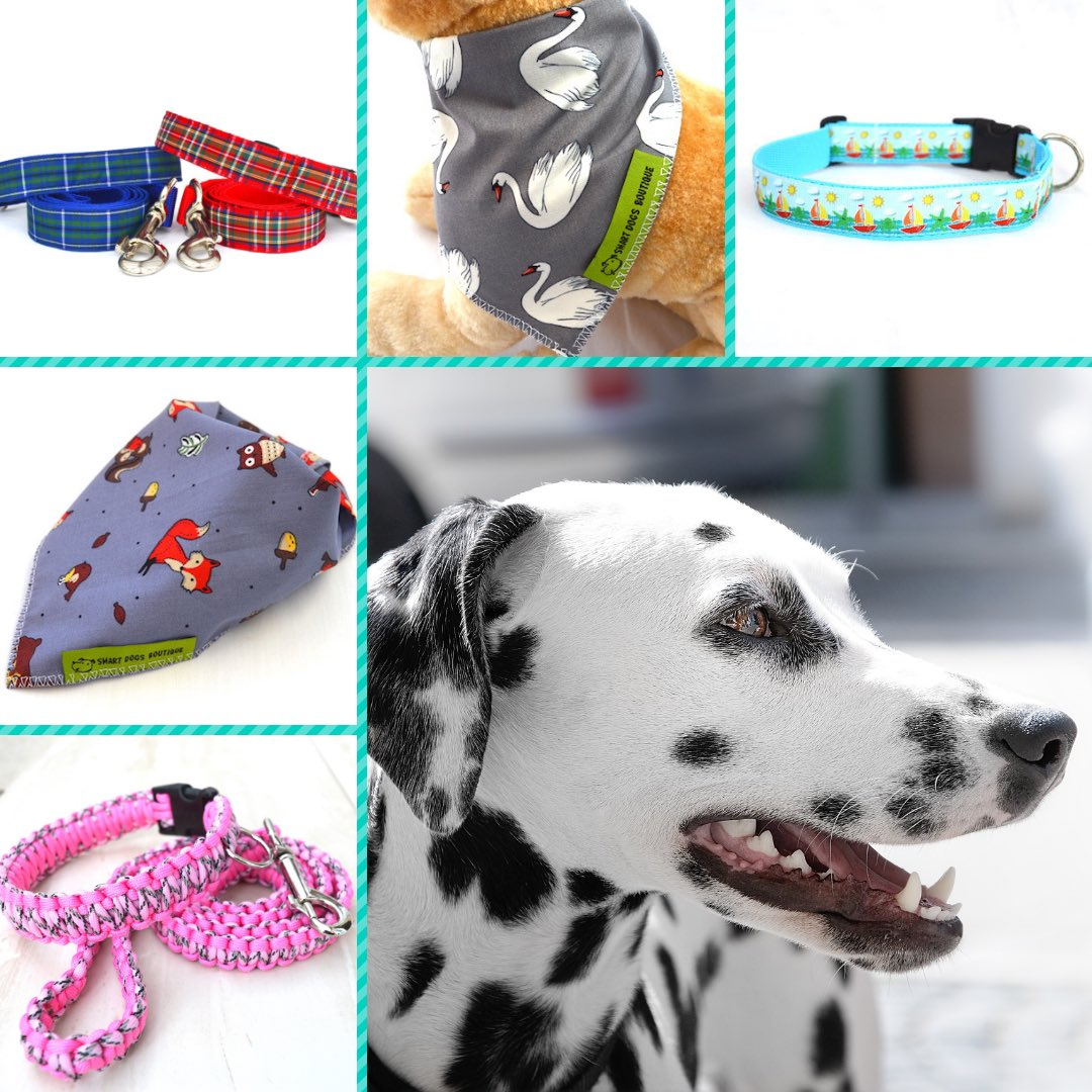 Smart Dogs Boutique For Handmade Dog Accessories's photo on #Earlybiz