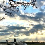 Image for the Tweet beginning: #Springbuds and #Phenom300s on the