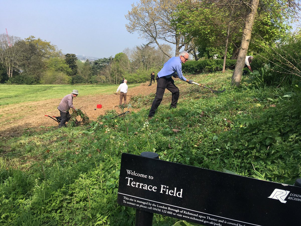 Well this is pretty idillic 🌞 what a beautiful day to be working at Terrace Fields! @TCVtweets