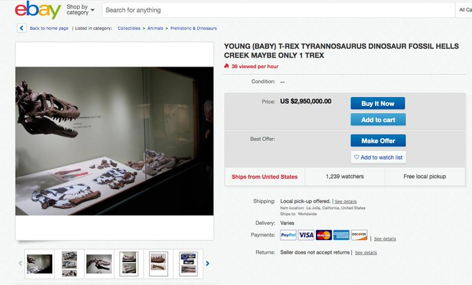 This hunter posts baby T-rex fossil on eBay for millions and sceintists are not very happy
