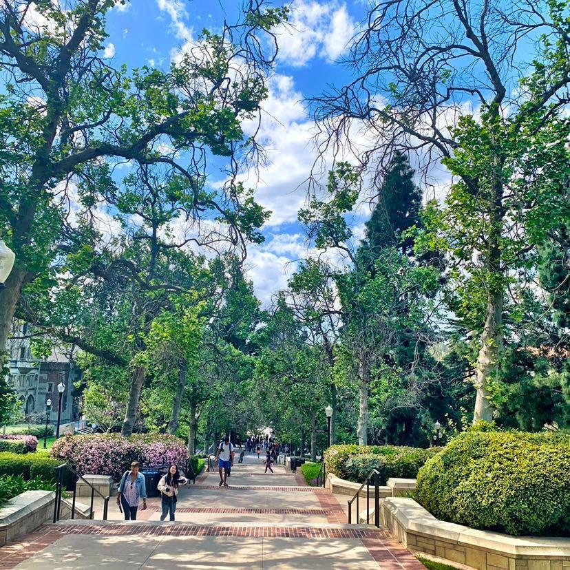 On campus every route is the scenic route. #SceneAtUCLA
