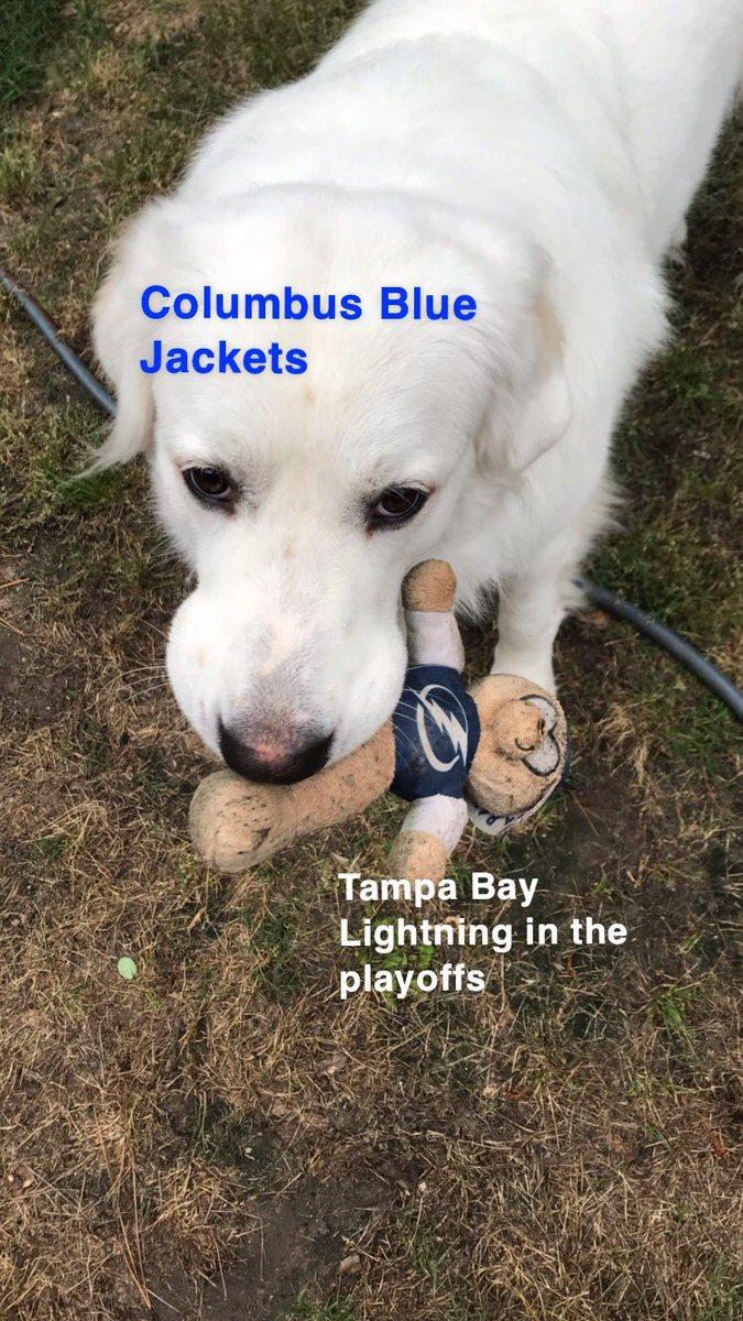 Poor lightning. #chokers #TampaBayLightning #NHLtoHouston https://t.co/3iMGZMUDEs