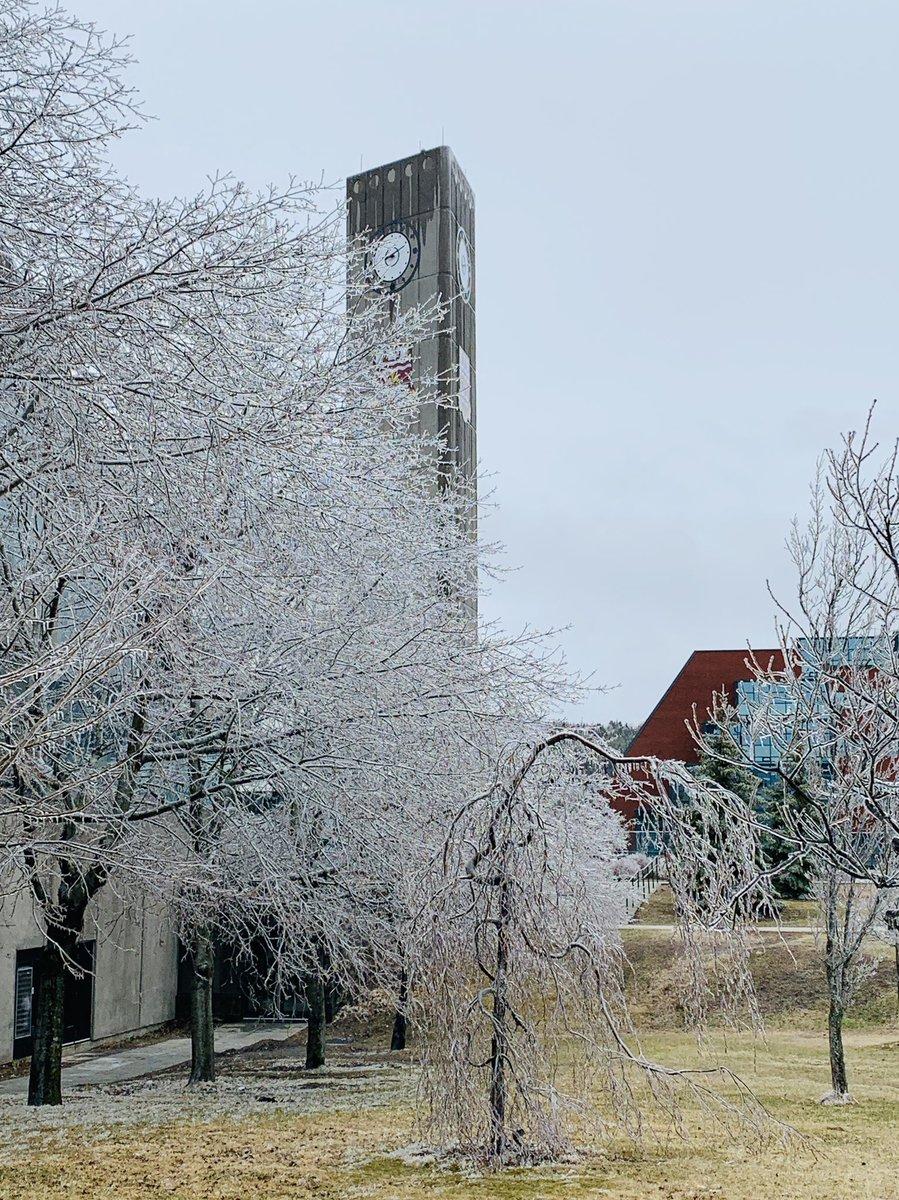 Campus is still glittering this morning! 🤩 #nlwx – at Memorial University of Newfoundland, St John's, NL
