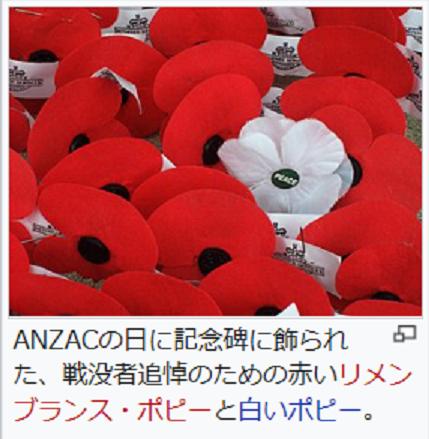 アンザック・デイはオーストラリアの祝日です。 第1次世界大戦のガリポリの戦いで勇敢にたたかったオーストラリア、ニュージーランド軍団(ANZAC)の兵たちと、当時国のために尽力した人々のために追討を行う日なのだそうです。(私も知らなかったので調べました。) ポピーの花を手向けるようで