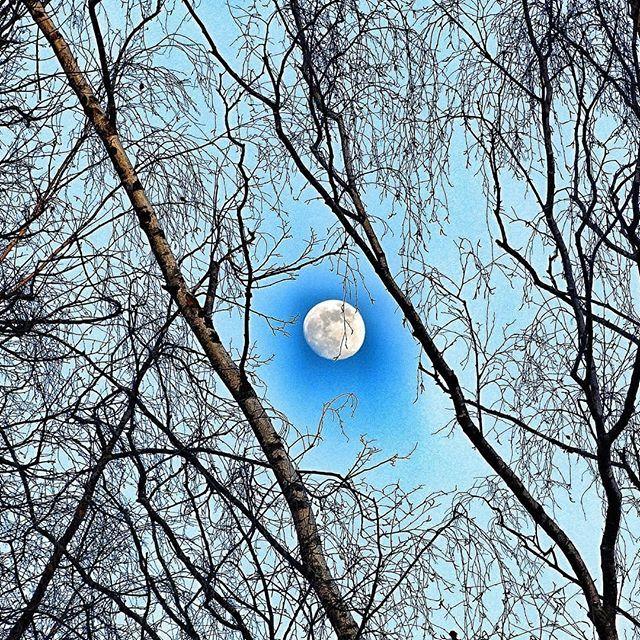 фото весны луна часы, подходящие стилю