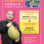 Image for the Tweet beginning: กลับมาอีกแล้ว!! กับต้นตำรับ #บุฟเฟ่ต์ทุเรียน ใหญ่ที่สุดในประเทศไทย!  ณ Square