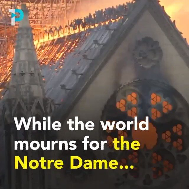 muslim daily's photo on #NotreDame