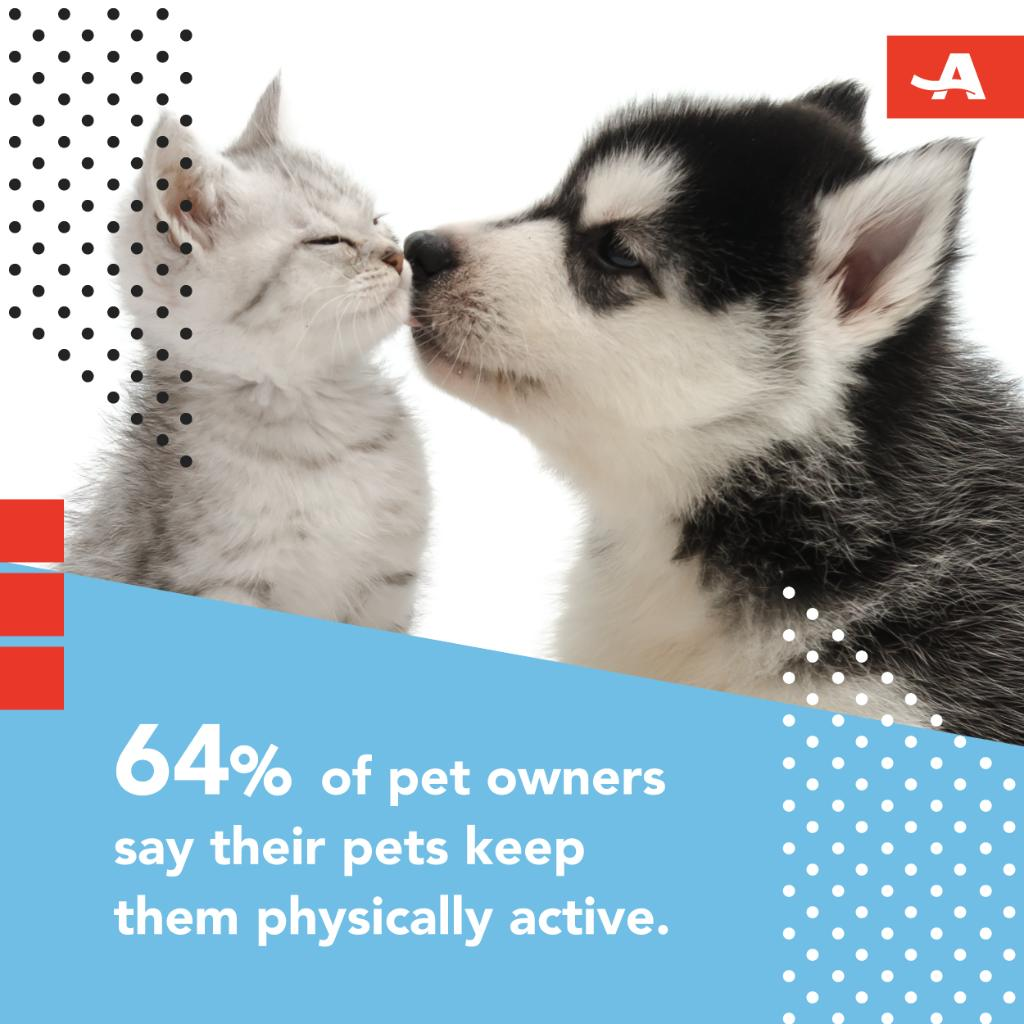 Having a pet can also help with sticking to a routine. Learn more about the benefits of pet ownership: http://spr.ly/6014Ed5Mp