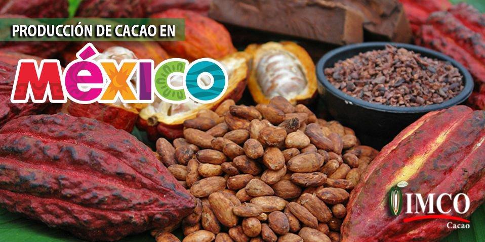 IMCO MX's photo on #felizmiércoles