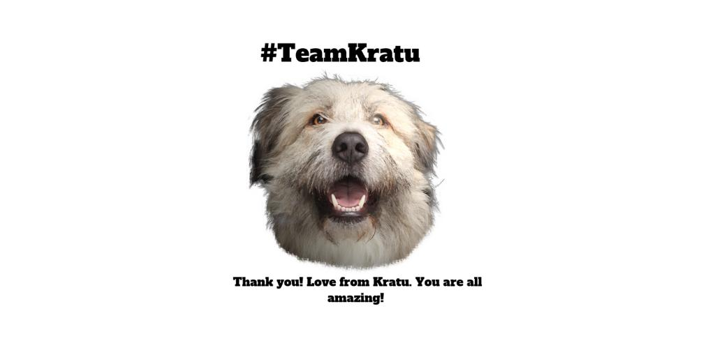 THANK YOU!!! For all of our friends who have shared and voted, who keep helping us.. Thank you. You are appreciated and we are grateful! #kratu #rescuedog #bekindlikekratu #appreciation #GratefulHeart ❤️❤️🙏🐾🐾🐶