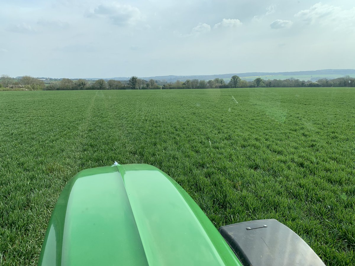 test Twitter Media - @CrossSlot drilled Skyfall looking a picture in the sunshine ☀️ over 12yrs since this fields has been moved now. #SoilHealth #notill https://t.co/9u4oCjQQaP