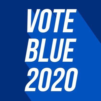 I CANNOT STRESS THIS ENOUGH.   #TrumpMustGo2020 #VoteBlueToEndThisNightmare #VoteBlue2020 #VoteBlueToSaveAmerica #BlueWave2020  <br>http://pic.twitter.com/DhCtC1eMw0