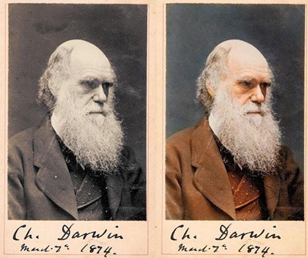 Prof.Frank McDonough's photo on Charles Darwin