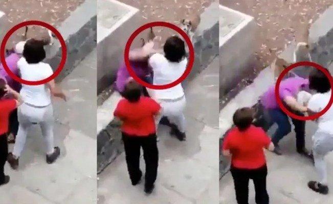 Joven golpea a mujer de la tercera edad porque su perro le ladró (video). #Nacional #LaRoja https://voxpopulinoticias.com.mx/2019/04/joven-golpea-a-mujer-de-la-tercera-edad-porque-su-perro-le-ladro-video/…