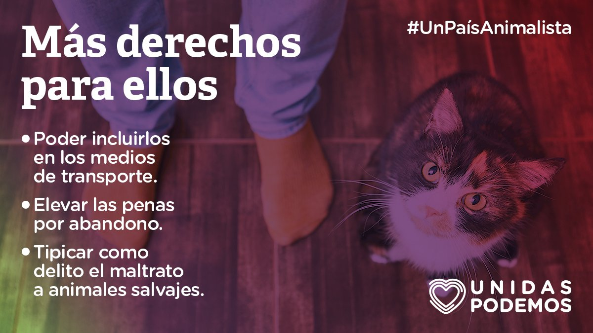 Pablo Iglesias's photo on #UnPaísAnimalista