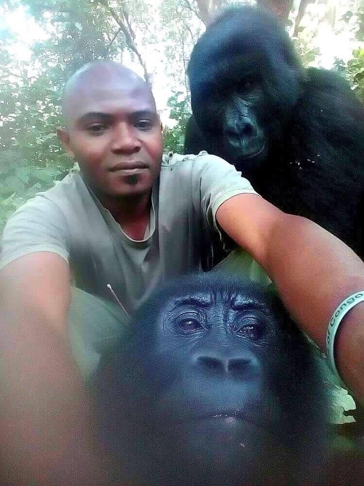 Gorilla Selfie with anti poaching rangers viral on internet