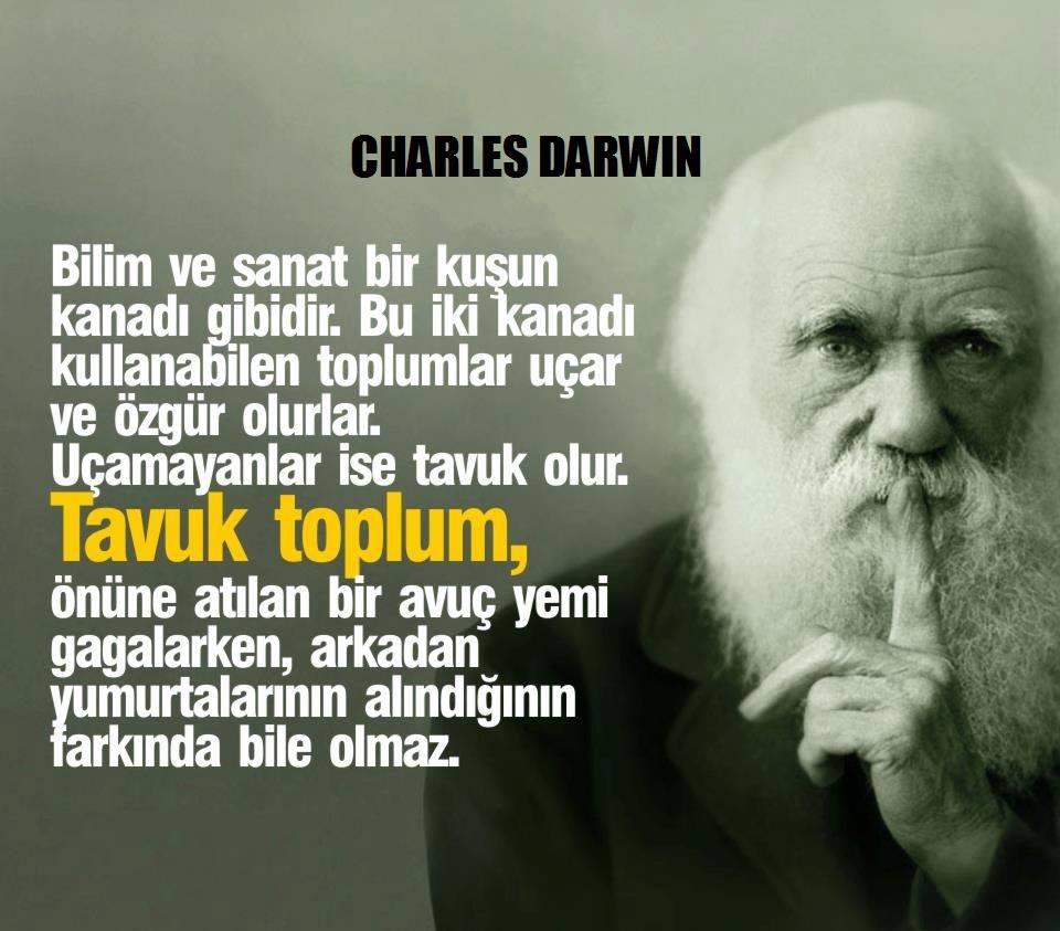 optimist's photo on Charles Darwin