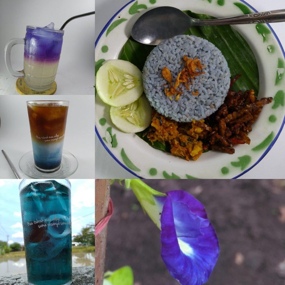Bunga Telang Di Jogja On Twitter Bantuin Mas Tri 085641571436 Promosi Warung Kopi Oemah Babadan Menu Nasi Biru Bunga Telang 7500 Jeruk Ungu 8rb Kopi Menara Blue Coffee Latte 12rb Teh Biru